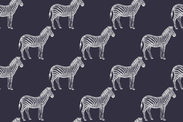Seamless pattern with African zebras.
