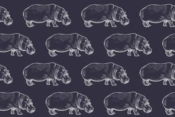 Seamless pattern with African hippopotamus.