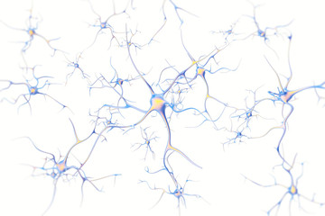 Neurons in the brain on white background with focus effect. 3d rendering