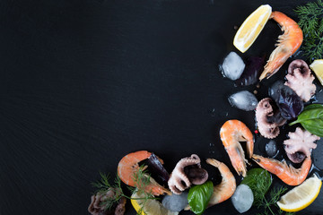 Preparing fresh seafood in the kitchen with gourmet pink shrimp and octopuses surrounded by ice, fresh herbs and spices on black stone background