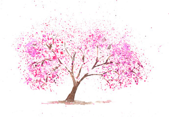 Pink cherry tree on white, watercolor painting