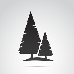 Pine tree vector icon.