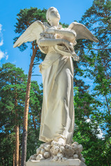 angel statue with wings on the sky background
