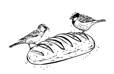 illustration of the sparrows and bread