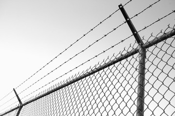 Barb Wire Fence