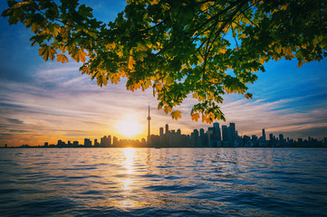 Papiers peints Toronto Toronto skyline with maple branches