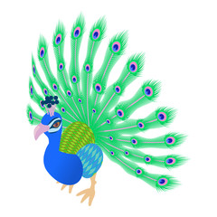 Peacock icon in cartoon style isolated on white background. Bird symbol vector illustration