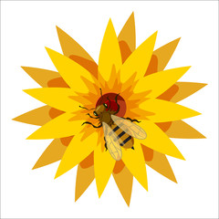 Bee on flower icon in cartoon style isolated on white background. Insects symbol vector illustration