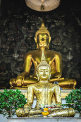 Buddha with  buddha background tree temple in thailand