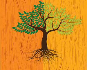 tree on wood background