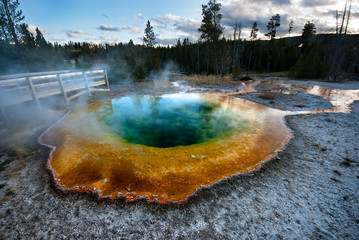 Morning Glory Hotspring in Yellowstone NP, USA