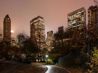 Manhattan skyline from Central Park by night, New York, USA
