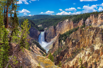 Ingelijste posters Natuur Park Falls in Grand Canyon of the Yellowstone National Park, Wyoming