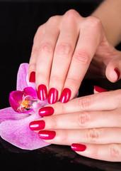 Top of pretty hands near iris flower over black