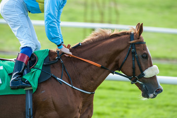 close-up of jockey on a race horse