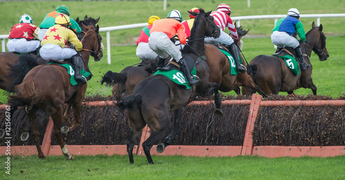 Race horses and jockeys jumping a hurdle during a race