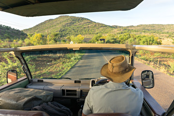 Sitting on the safari jeep to explore the savannah