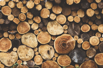 Printed roller blinds Firewood texture firewood wood texture