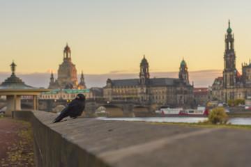 Dresden zur Abendstunde
