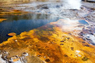Upper Geyser Basin Bacteria Mat