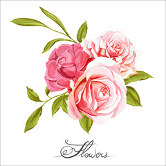 Bouquet of three roses. Chinese rose. Hand drawn. All elements are separated and easy to move. Can be used as design element in background, greeting cards, covers, etc. Vector stock.