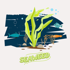 seaweed under water with fish, octopus and Swordfish  - vector