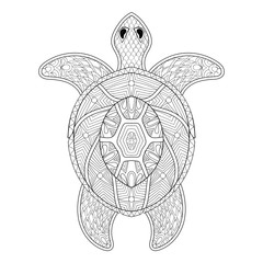 Turtle in zentangle style. Freehand sketch for adult antistress