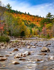 Fall foliage along the river