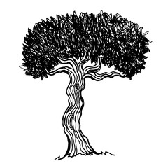 Vintage illustration of a tree