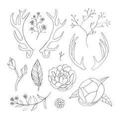 Set of hand drawn floral, brackets, horns and etc. for decoration. Vintage elements.