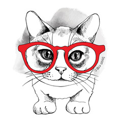 The image Portrait of  the cat in the glasses. Vector illustration.