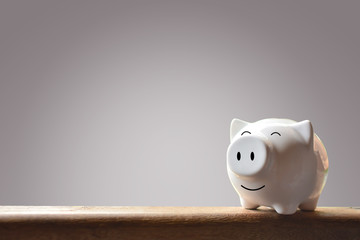 Piggy bank on blur background. Soft focus