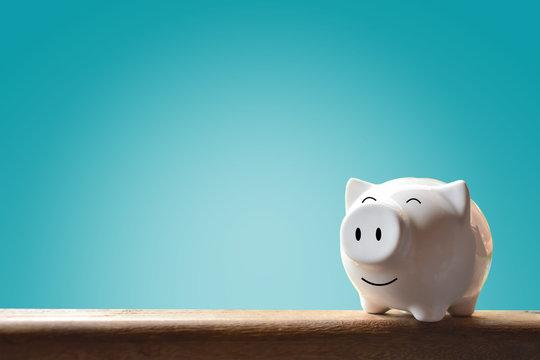 Piggy bank on blur background. Soft focus