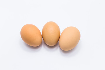 Healthy eggs isolated