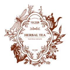 Herbal tea herbs and flowers botanical vintage herbs tea