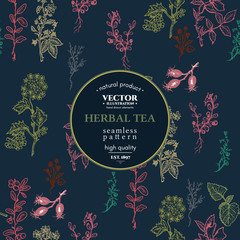 Herbal seamless pattern vintage herbs and spice sketch