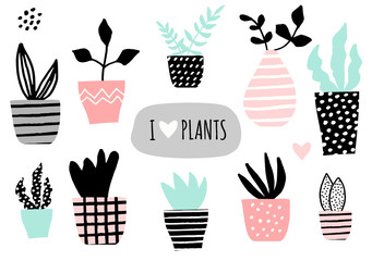 House Plants Collection