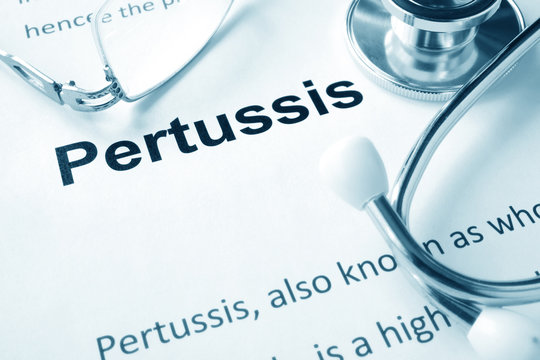 Paper with word  Pertussis disease and stethoscope.