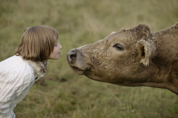 Little girl blowing beautiful cow in the nose. Lifestyle portrait