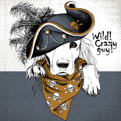 Poster with portrait of a dog wearing gray pirate hat and brown neckerchief with image skull. Vector illustration.