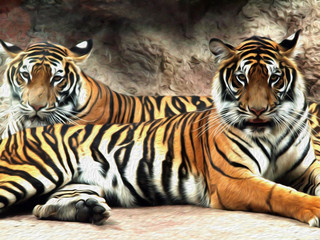 Oil painting Tiger / photo effect  Oil painting