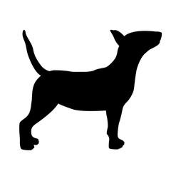 dog bull terrier vector illustration black silhouette