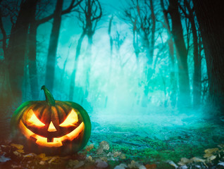 Halloween pumpkin in forest