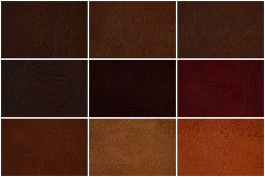 Leather texture set in several shades of Brown