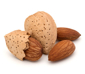 Wall Mural - Almond nut in shell and shelled isolated on white background clo
