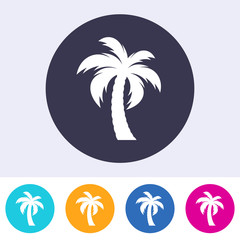Vector single palm tree icon