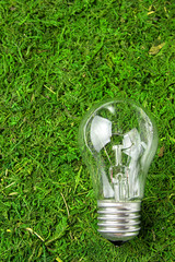 Concept ecology. Light bulb on green natural moss with copy space