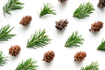 Christmas background. Green fir sprig and cones on white background. Pattern for design