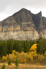 Wall Mural - Fall Color Many Glacier East Side National Park Montana