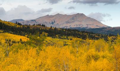 Fall Color Many Glacier East Side National Park Montana